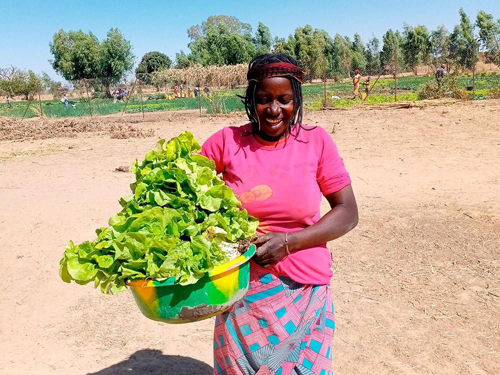 Frau mit geerntetem Salat